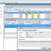 Datenerfassung mit klaren Strukturen in der Projektmanagement Software in-STEP BLUE