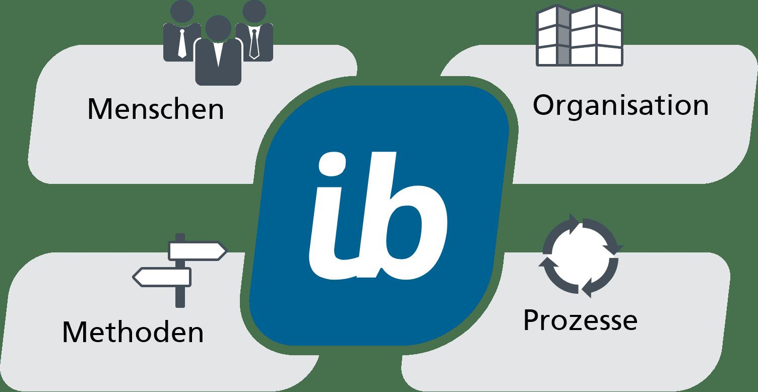 in-STEP BLUE für Menschen und Organisationen, für Prozesse und Methoden