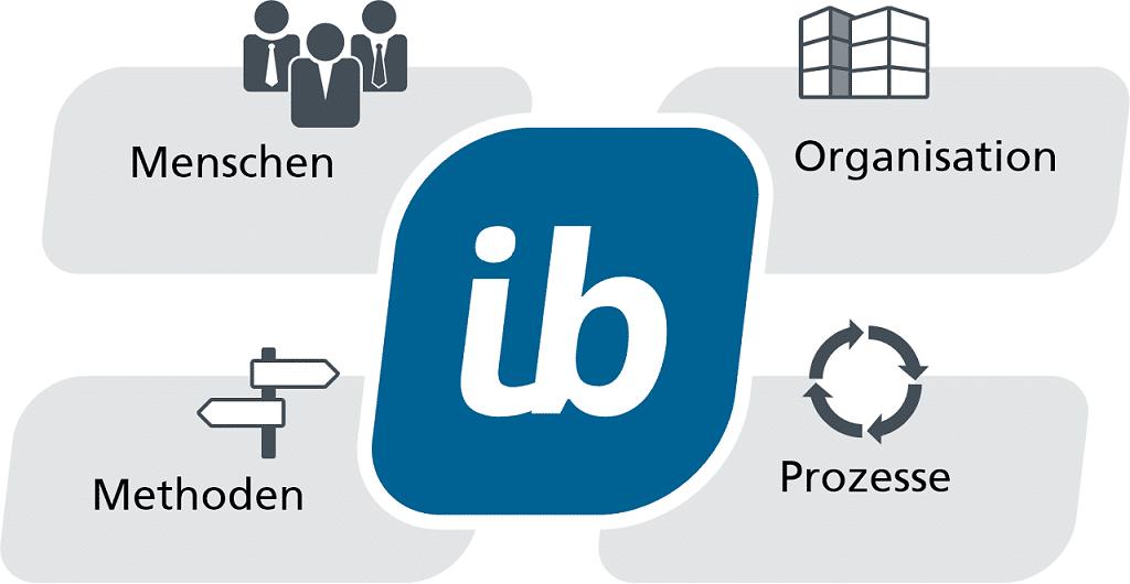 Projektmanagement Software in-STEP BLUE - Für Menschen und Organisationen, mit Prozessen und Methoden