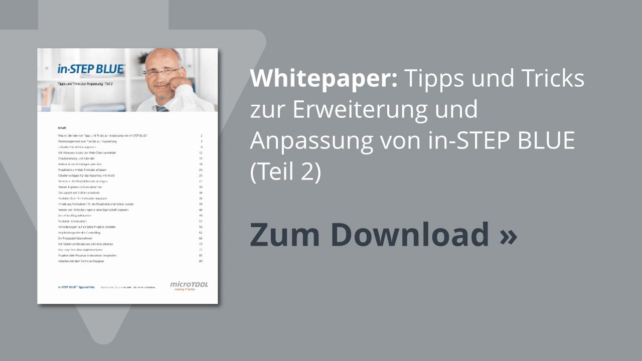 Download: in-STEP BLUE Tipps & Tricks (Teil 2)