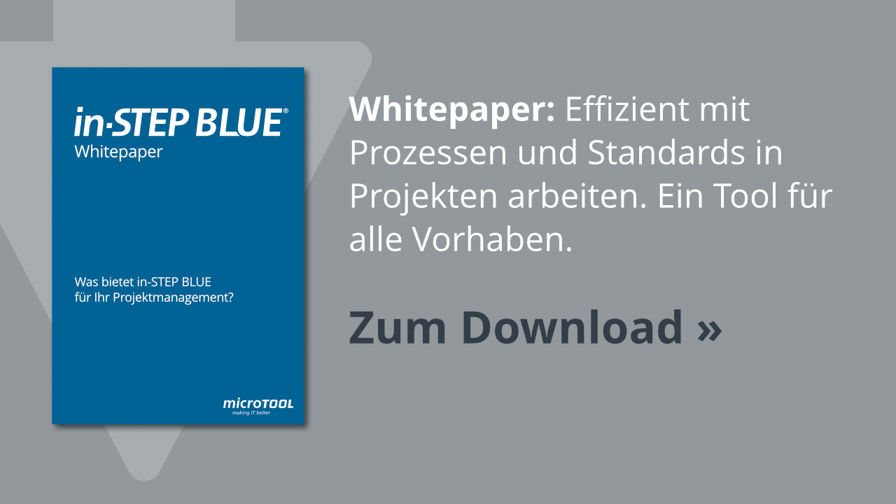 Whitepaper: in-STEP BLUE