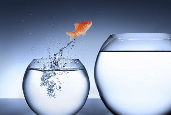 Raus aus dem Mikromanagement