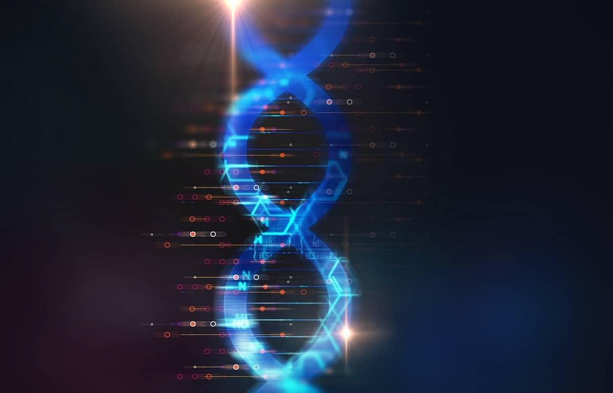 Firmen-DNA