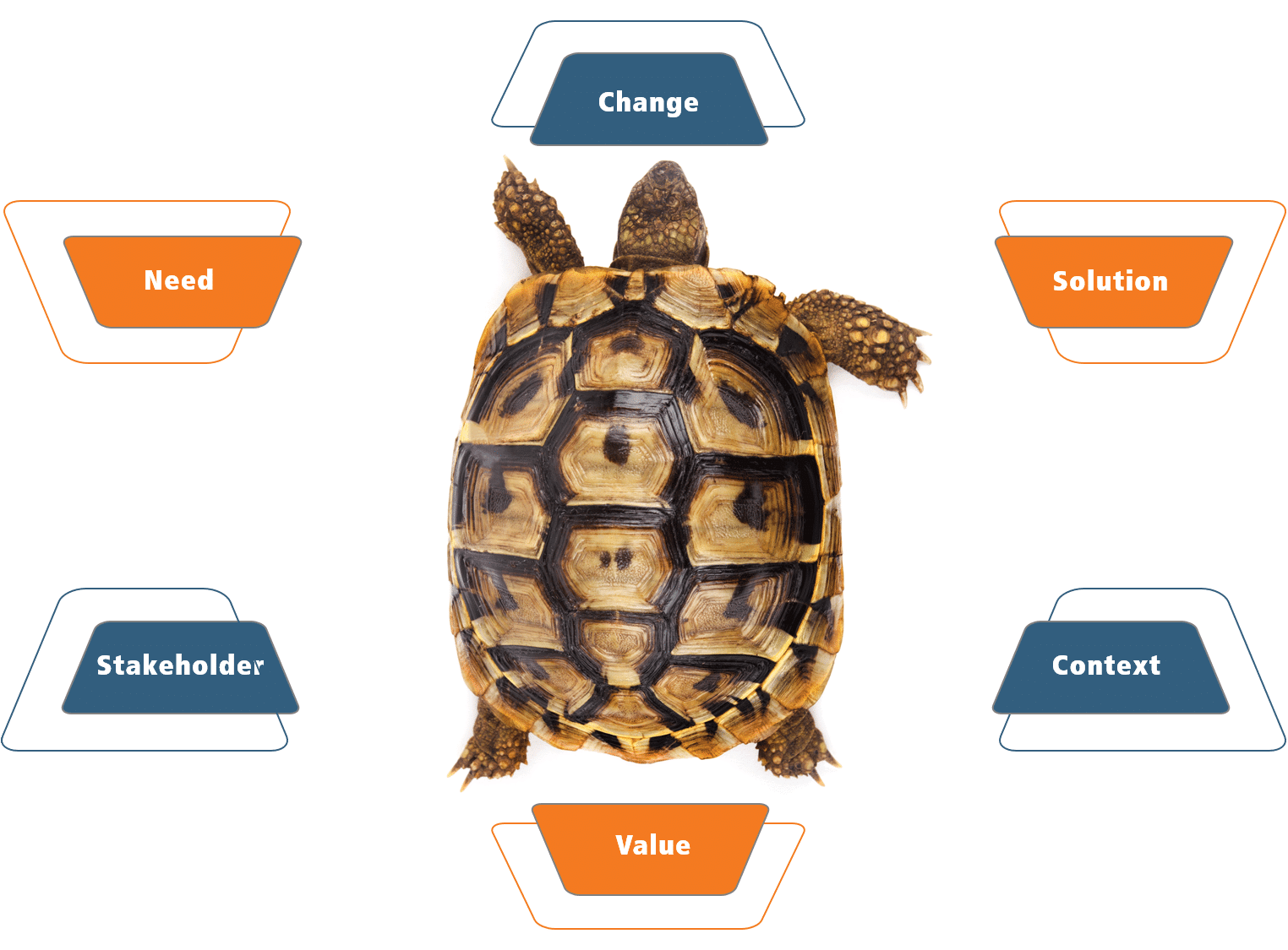 The business analysis turtle