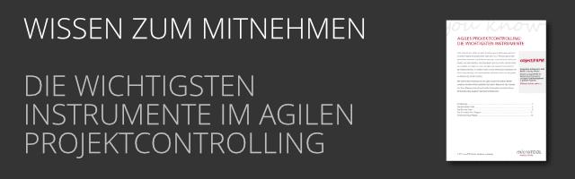 DE Instrumente des Agilen Projektcontrolling als PDF