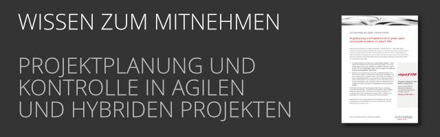 DE Projektplanung und -kontrolle als PDF