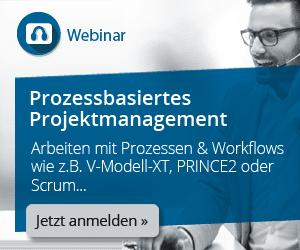 DE Webinar Prozessbasiertes Projektmanagement