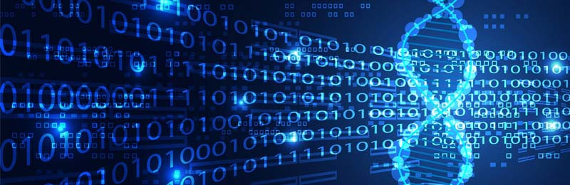 Job Full Stack Web Developer bei microTOOL gesucht