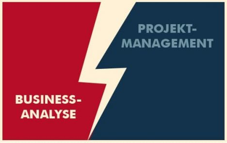 business analyse vs projektmanagement