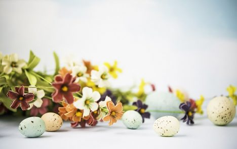Easter still with flowers and eggs